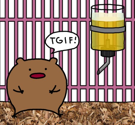 have-fun-hamster-but-dont-drink-and-drive